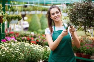 Cómo controlar las plagas en huertos y jardines en primavera